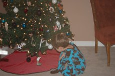 Checking out the newly put up tree!