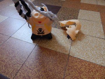 destructions nocturnes chien