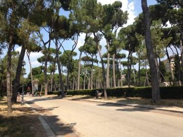 Walk to Galleria Borghese