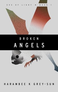 brokenAngelsEbookCover121214
