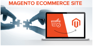 Magento is the best way to stream the ecommerce store sale