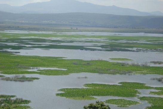 Parc National d'El kala 0