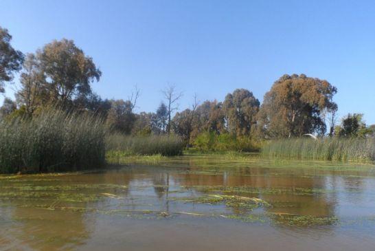 Parc National d'El kala 4
