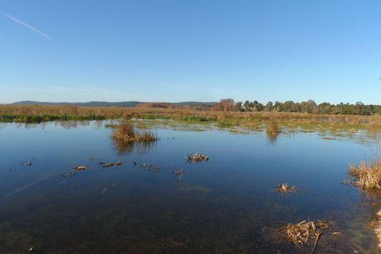 Parc National d'El kala 7