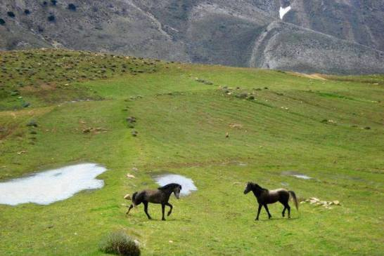 Parc National de Belezma 2