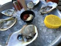 istiridye-oysters-sea-wolf-bushwick-brooklyn-new-york
