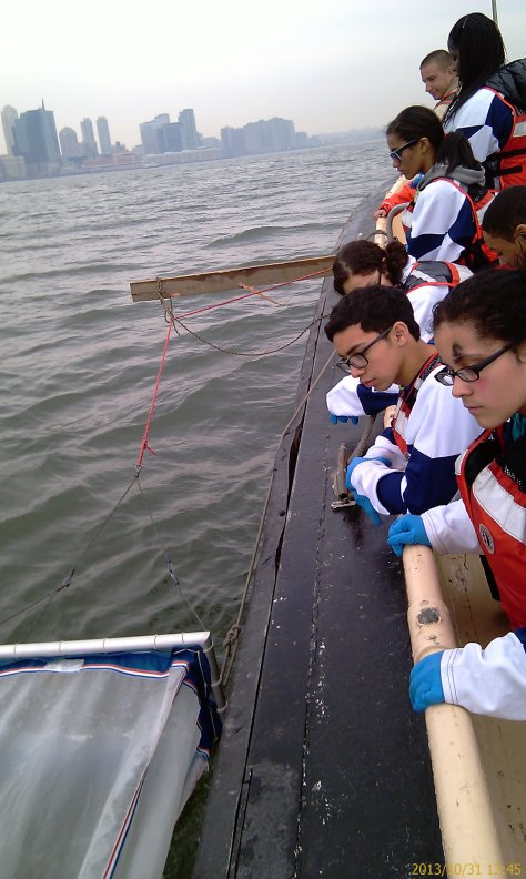 On October 31st, our research scholars teamed up with Rachael of the Rozalia Project to monitor microplastics in the Hudson River Estuary.