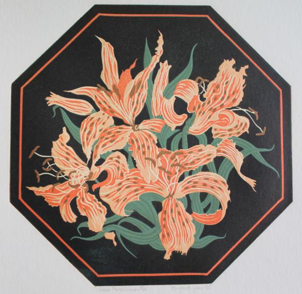 Lilium Pardalinium
