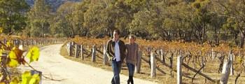 Goldfields Track