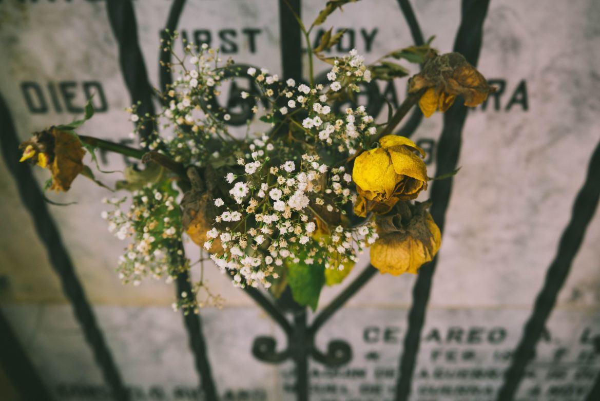 MUST READ Italian Mystery: The Murder of Wilma Montesi