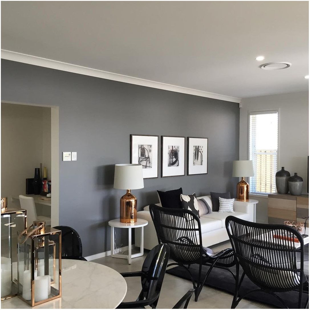 Grey Painted Feature Wall Living Room