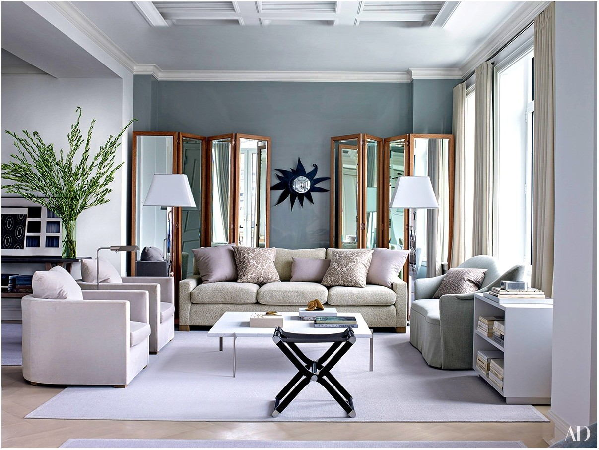 Houzz Living Room Painted Gray Color