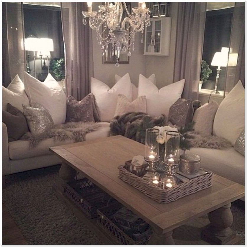 Classy Shic Living Room Decorating Ideas