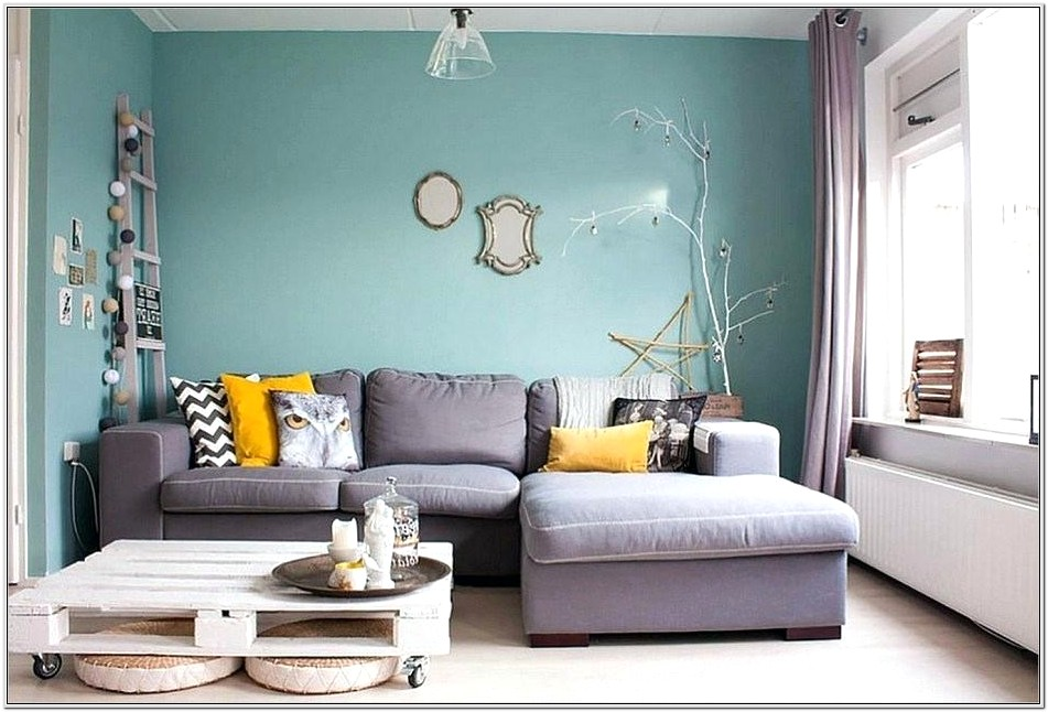 Gray Wall Small Living Room Ideas
