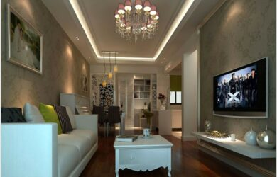 Long Living Room Decorate