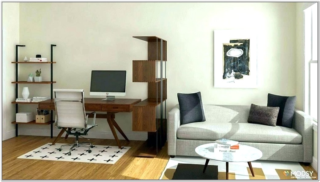 Office Living Room Combo Ideas