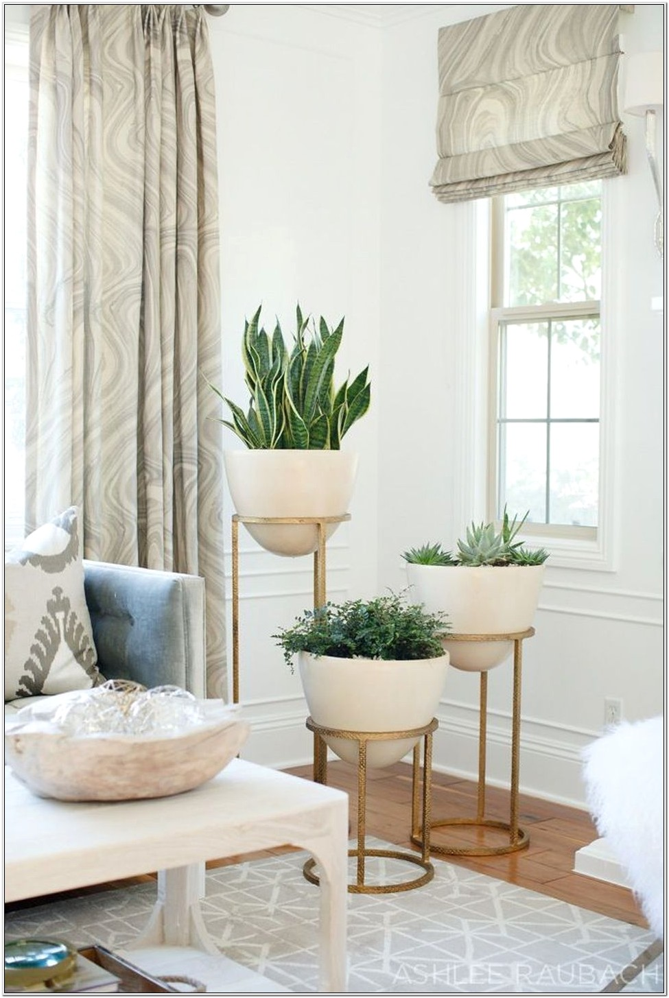 Plant Stand Ideas For Living Room