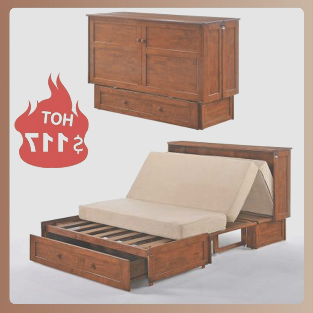Cabinet Transforms Into Bed