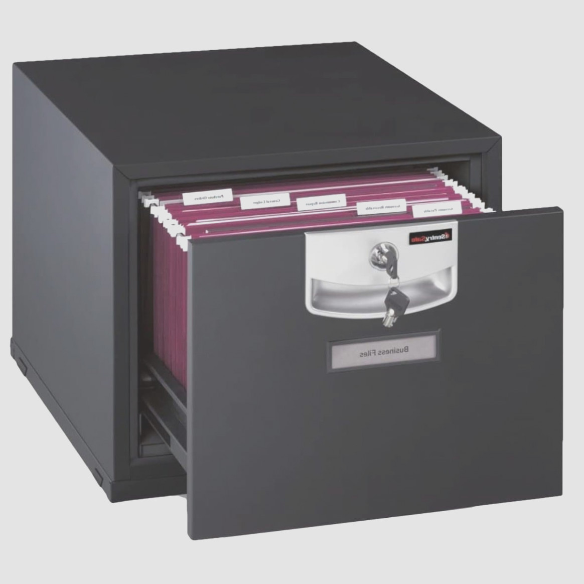 Sentry File Cabinet Safe