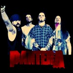 Behind The Music Remastered:  Pantera