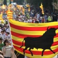 """CAT-CONSTITUCIONAL: Boix """"El escenario en Barcelona es complejo, pero somos optimistas"""""""