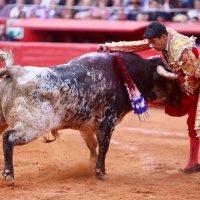 Sergio Flores se les fue por delante con harta enjundiaPor Bardo de la Taurina