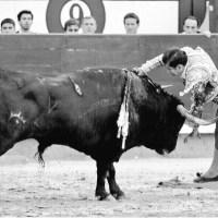 Así vio la prensa la actuación de Joselito Adame en Las Ventas de Madrid