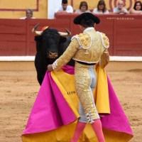 Ocho con Ocho:¿Qué onda? Por Luis Ramón Carazo