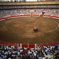 Festejos de la Feria de Santander por SKY y Canal Toros