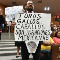Reversa a prohibición de corridas de toros en Veracruz