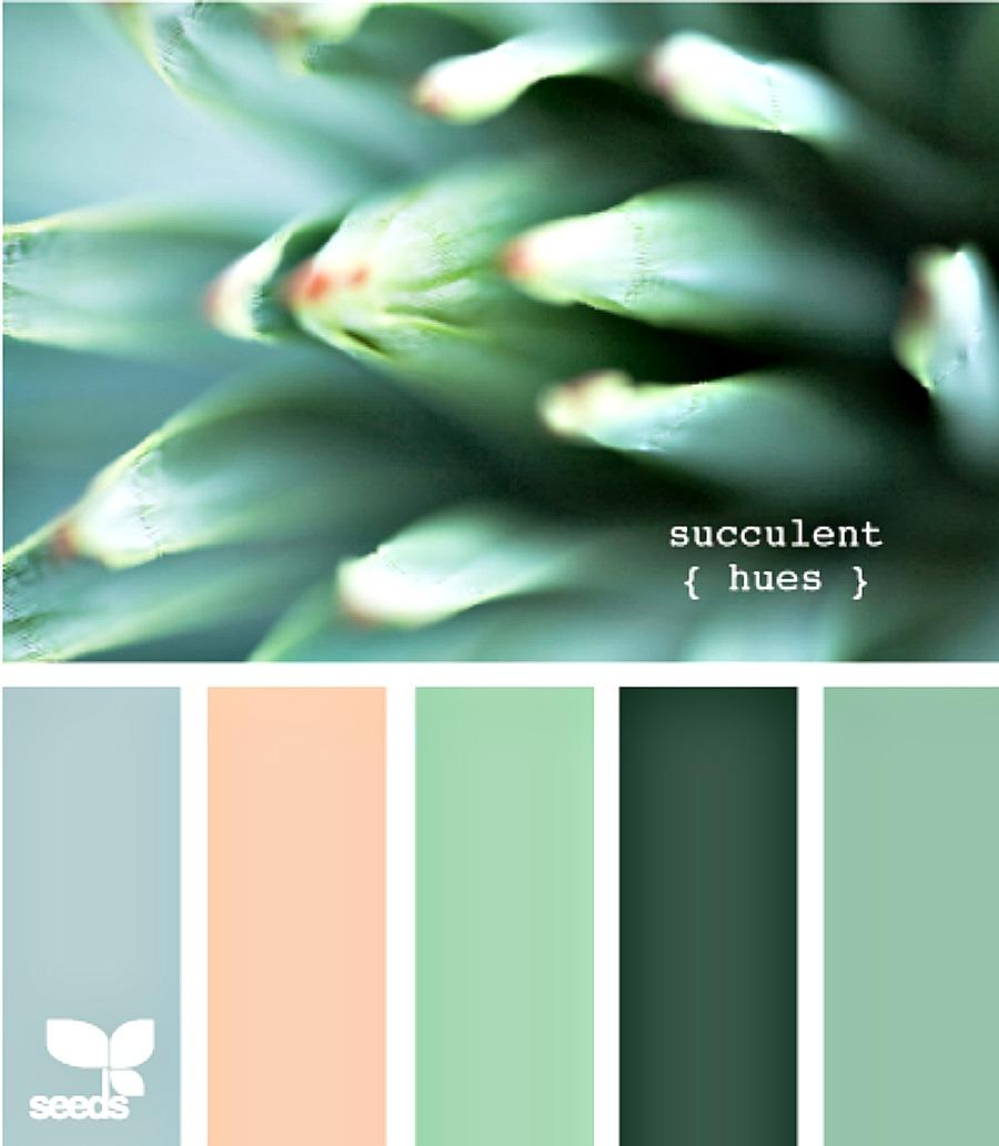 design seeds wedding colors