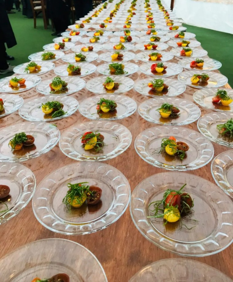 Fields on the Saco Benefit Dinner heures d'oeuvres