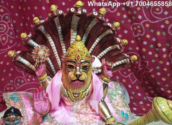 Prahalad Narasimha Dev 10 inches-Painted-Pink Dress 4