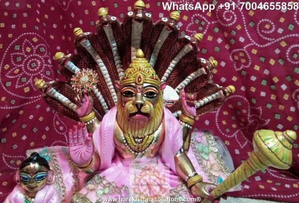Prahalad Narasimha Dev 10 inches-Painted-Pink Dress 3