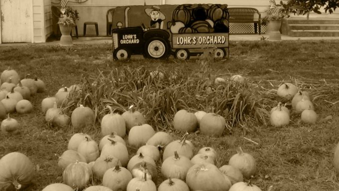 Lohr's Orchard