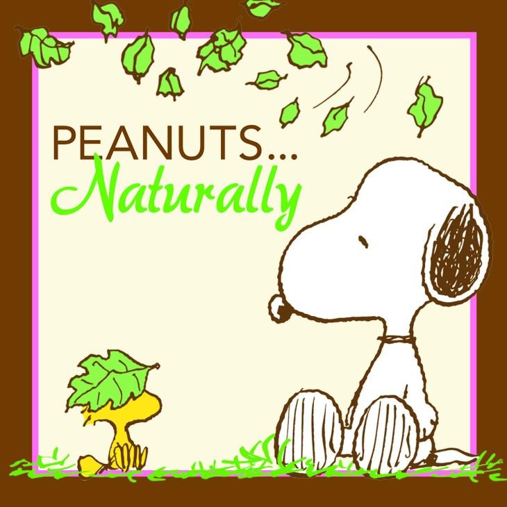 (c) 2016 Peanuts Worldwide LLC