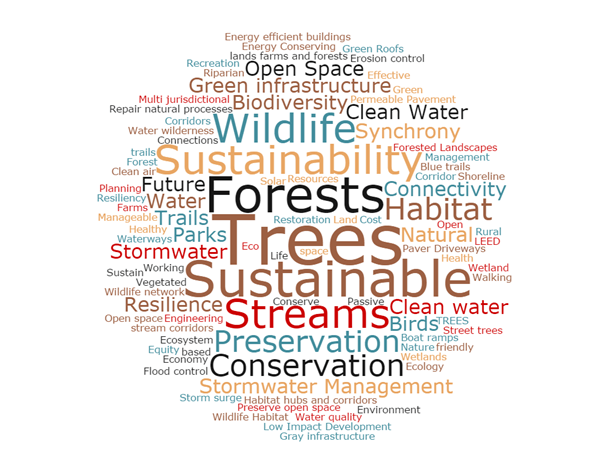 """The word cloud showing responses to the workshop question, """"What three words come to mind when you hear 'Green Infrastructure'?"""""""
