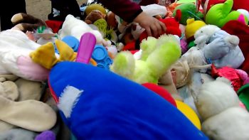 Send Your Unwanted Stuffed Animals on a Journey this Holiday Season