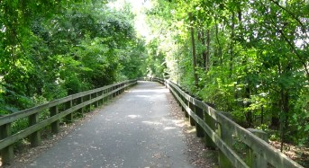 Vote for Your Favorite Local Park