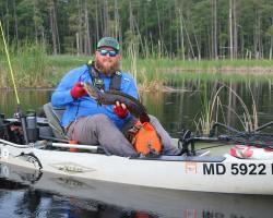 Fisherman On Kayak Eaten By Snakehead Fish?