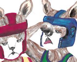 Stu Kangaroo Is Looking For You