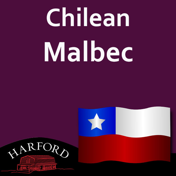 Chilean Grape Malbec