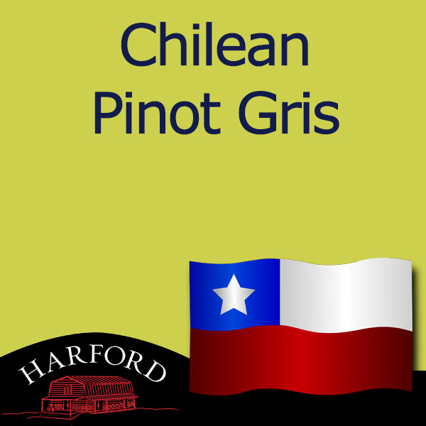 Chilean Grape Pinot Gris
