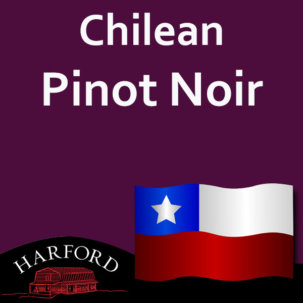 Chilean Grape Pinot Noir