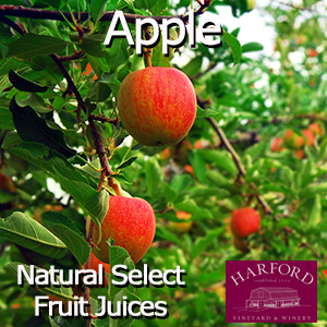 Natural Select Apple Juice