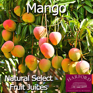 Natural Select Mango Juice