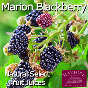 Natural Select Marion Blackberry Juice
