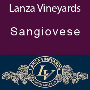 Lanza Vineyards Sangiovese Brunello Clone