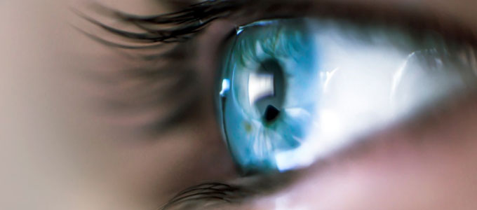 Biaya 6 Dimension Z LASIK - uk.businessinsider.com