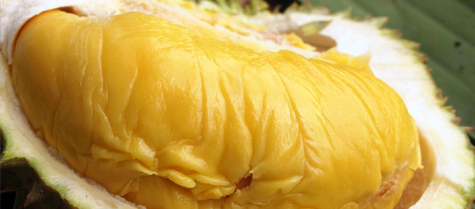 Daging legit durian musang king (sumber: medium.com)